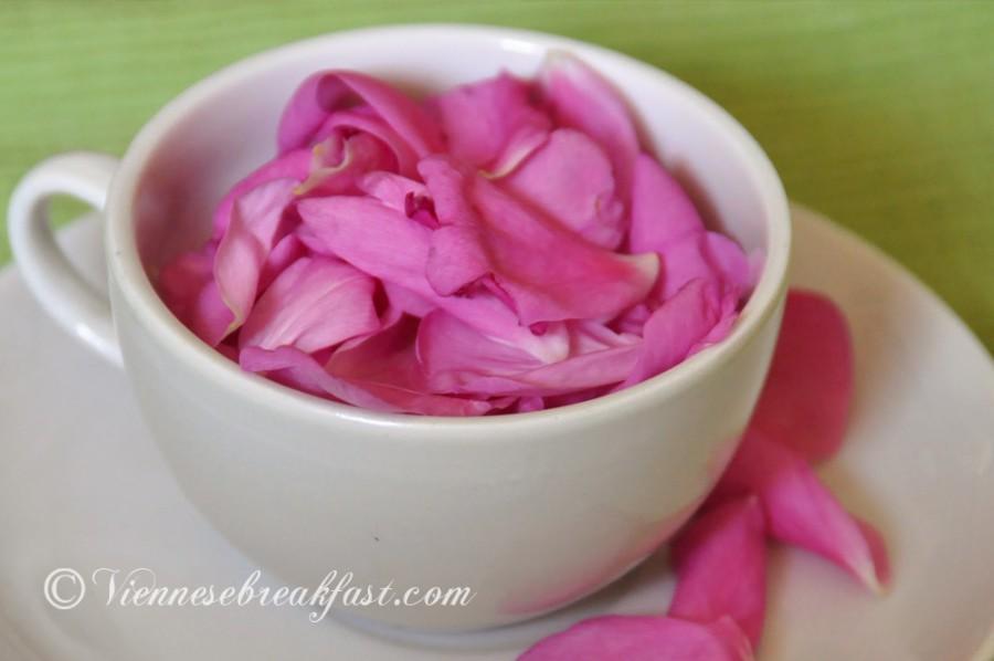 roza-9