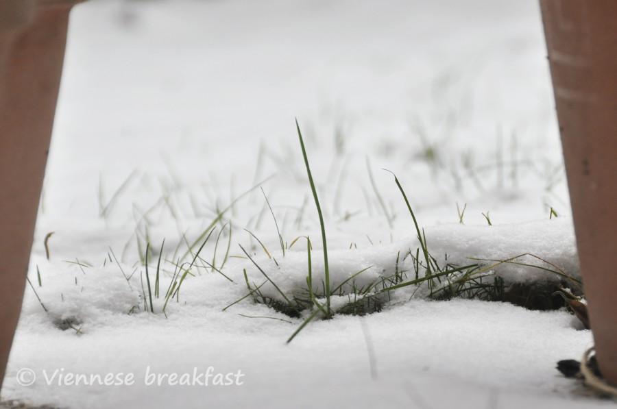 snieg3