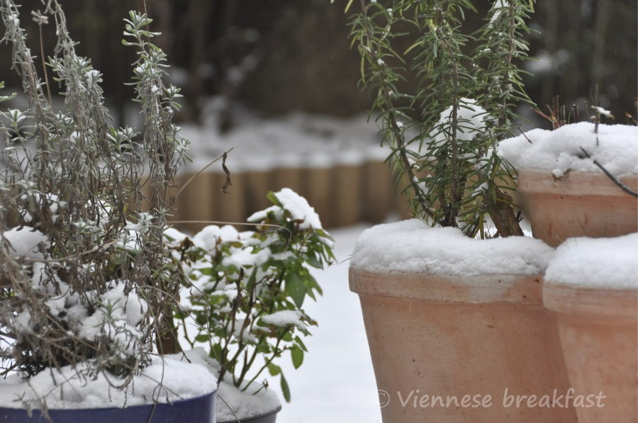 snieg7