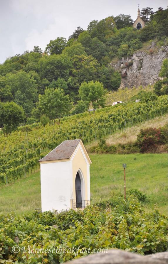 winnice19