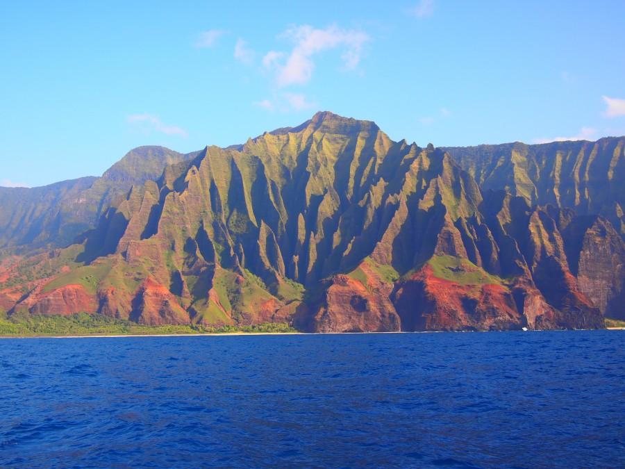 Hawaje Papugi. Autorka zdjęcia jest Papuga