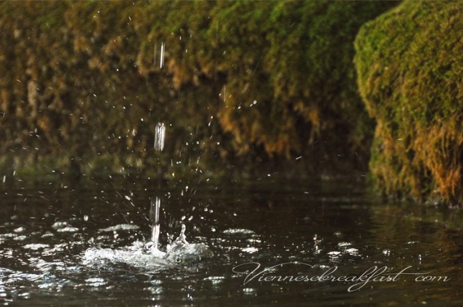 kropla-wody