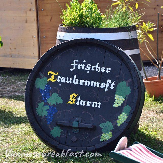 Sturm  bdc w Austrii koniecznie si napijcie austria myaustriahellip