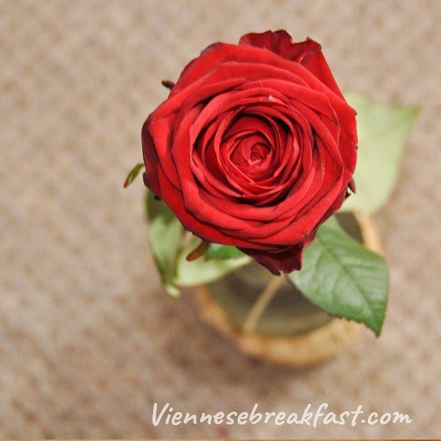 Dlaczego badylki tak ciesz kobiety? rado kwiat ra flauers naturehellip