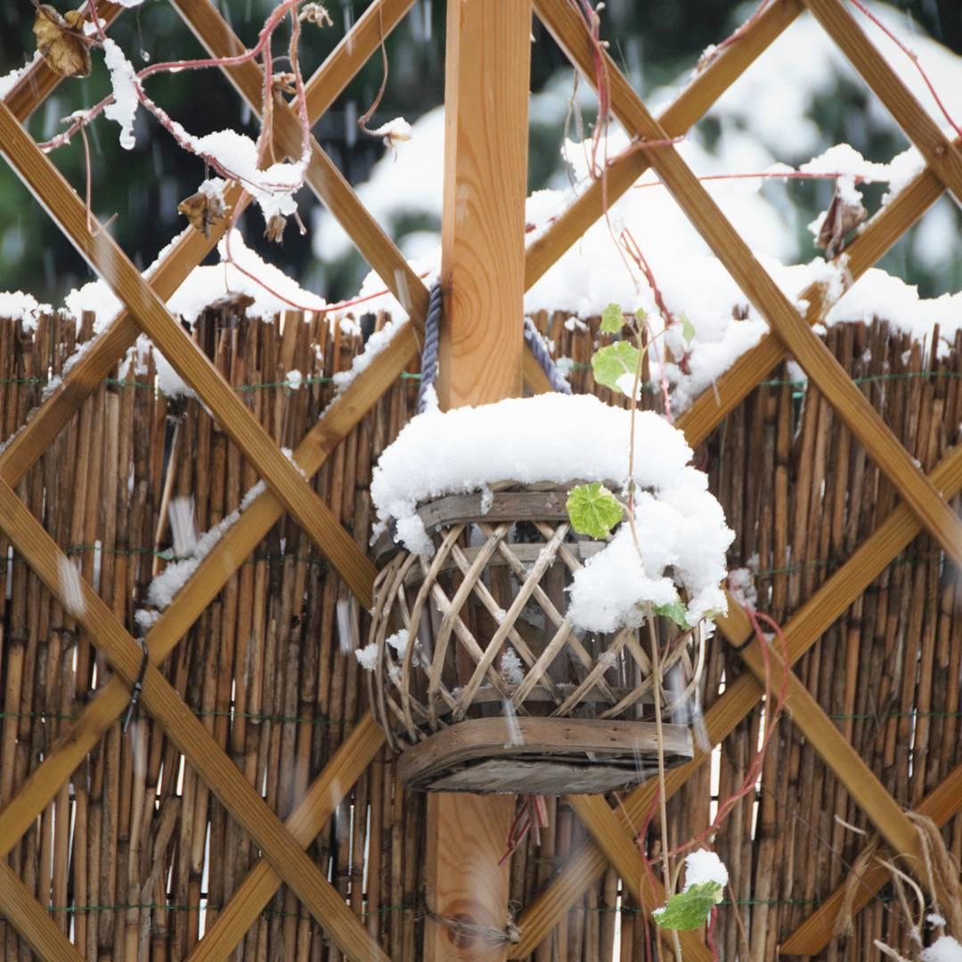Zima przysza Biaa mokra No i dobrze W kocu juhellip